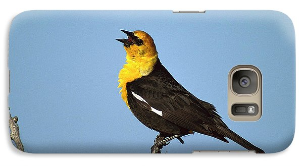 Yellow-headed Blackbird Singing Galaxy S7 Case