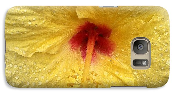 Galaxy Case featuring the photograph Yellow Hibiscus In The Rain by Alohi Fujimoto