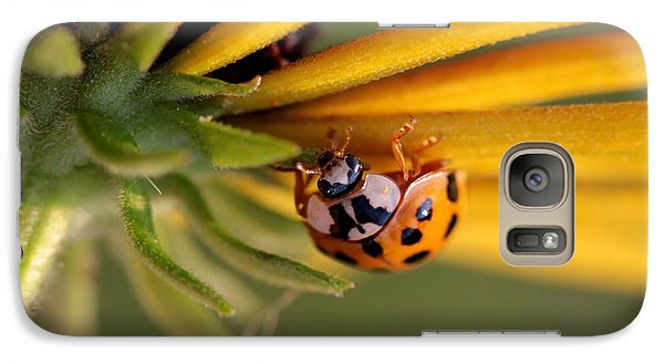 Galaxy Case featuring the photograph Yellow Lady - 3 by Kenny Glotfelty