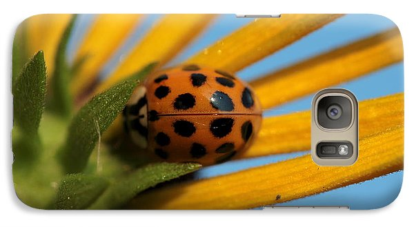 Galaxy Case featuring the photograph Yellow Lady Bug - 5 by Kenny Glotfelty