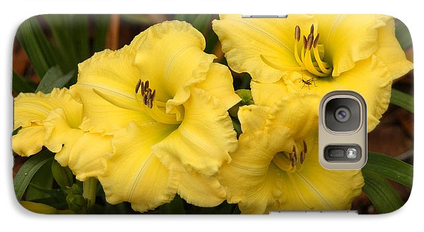 Galaxy Case featuring the photograph Yellow Lillies by Donald Williams