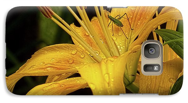 Galaxy Case featuring the photograph Yellow Lily With Bug by Michael Flood