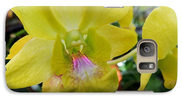 Galaxy Case featuring the photograph Yellow Orchid by Kristine Merc