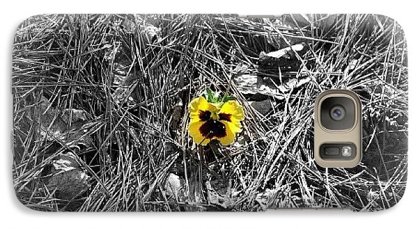 Galaxy Case featuring the photograph Yellow Pansy by Tara Potts