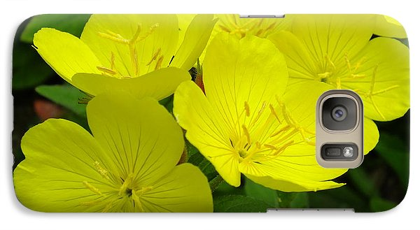 Galaxy Case featuring the photograph Yellow Primrose by Gene Cyr