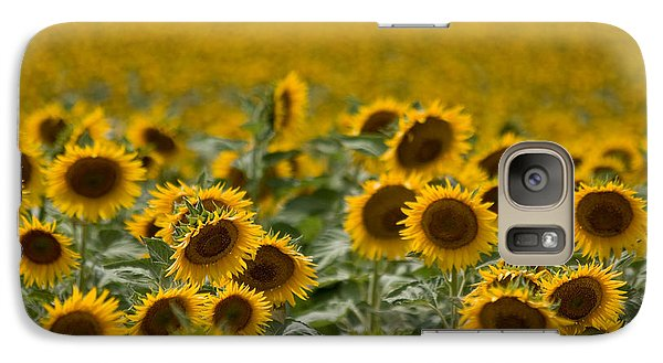 Galaxy Case featuring the photograph Yellow by Ronda Kimbrow