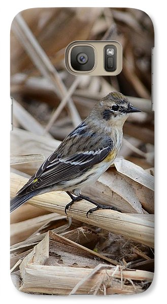 Galaxy Case featuring the photograph Yellow-rumped Warbler by Debra Martz