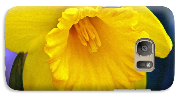 Galaxy Case featuring the photograph Yellow Spring Daffodil by Kay Novy