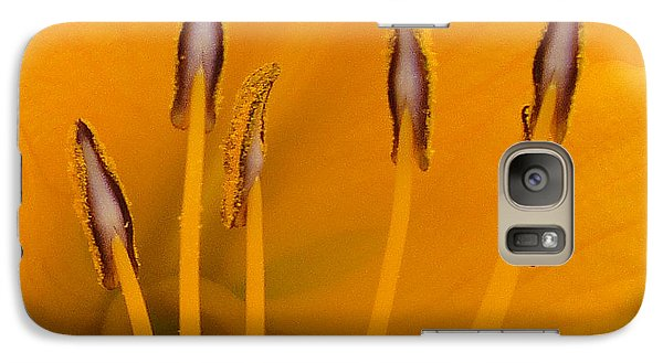 Galaxy Case featuring the photograph Yellow Stamens Squared by TK Goforth