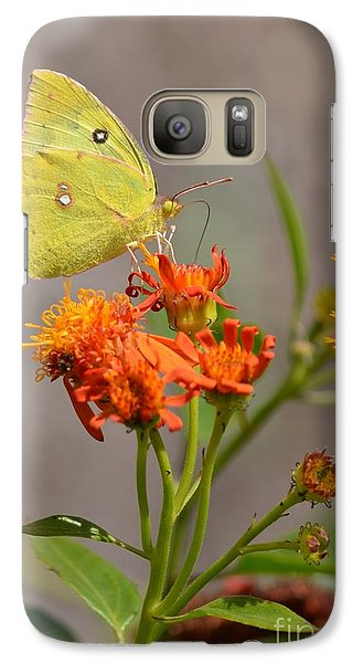 Galaxy Case featuring the photograph Yellow Sulphur Butterfly by Debra Martz