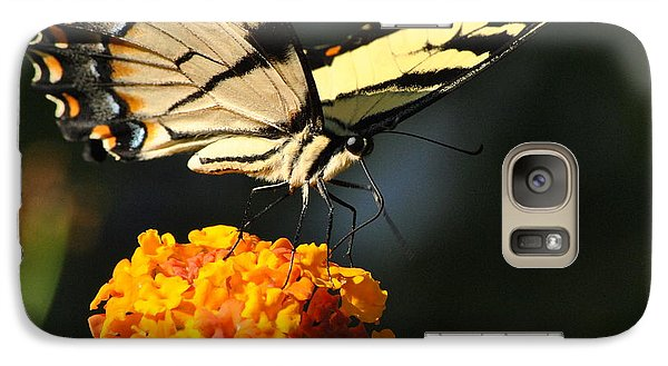 Galaxy Case featuring the photograph Yellow Swallowtail by Kelly Nowak
