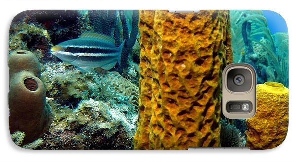 Galaxy Case featuring the photograph Yellow Tube Sponge by Amy McDaniel