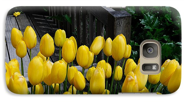Galaxy Case featuring the photograph Yellow Tulips by Haleh Mahbod