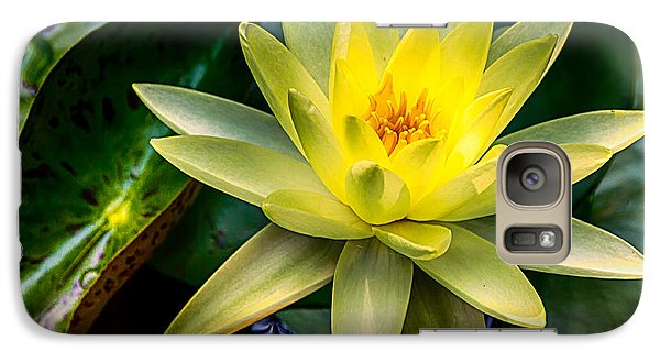 Galaxy Case featuring the photograph Yellow Water Lily by Jay Stockhaus