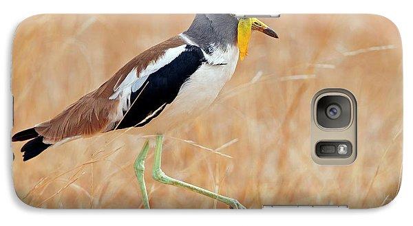 Yellow-wattled Lapwing Galaxy S7 Case by Bildagentur-online/mcphoto-schaef