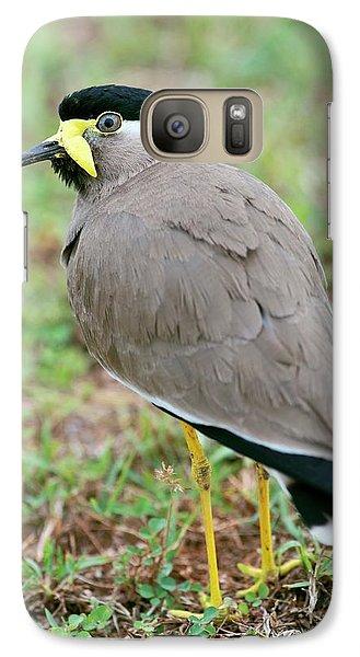 Yellow Wattled Lapwing Galaxy S7 Case