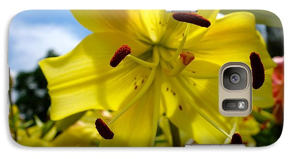 Yellow Whopper Lily 2 Galaxy S7 Case by Jacqueline Athmann