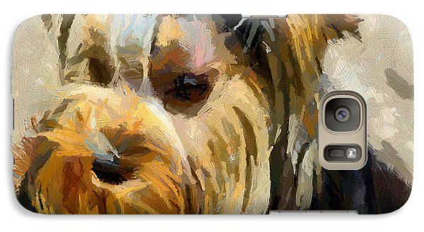 Galaxy Case featuring the painting Yorkshire Terrier by Georgi Dimitrov