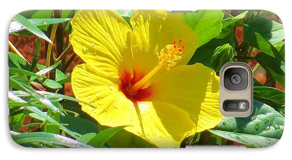 Galaxy Case featuring the photograph You Are My Sunshine by Jeanette Oberholtzer