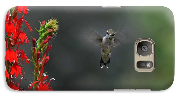Galaxy Case featuring the photograph You Looking At Me by Judy Wolinsky