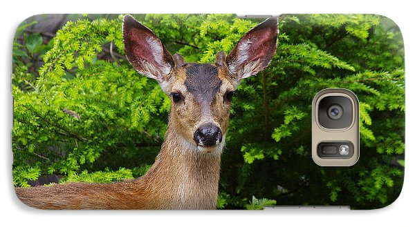 Galaxy Case featuring the photograph Young Buck by Adria Trail