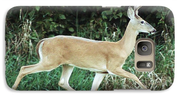 Galaxy Case featuring the photograph Young Buck by Lorna Rogers Photography