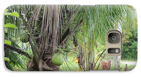 Galaxy Case featuring the photograph Young Coconut Tree by Cyril Maza