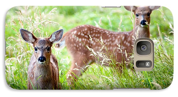Galaxy Case featuring the photograph Young Deer by Crystal Hoeveler