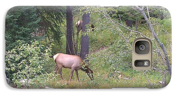 Galaxy Case featuring the photograph Young Elk Grazing by Fortunate Findings Shirley Dickerson