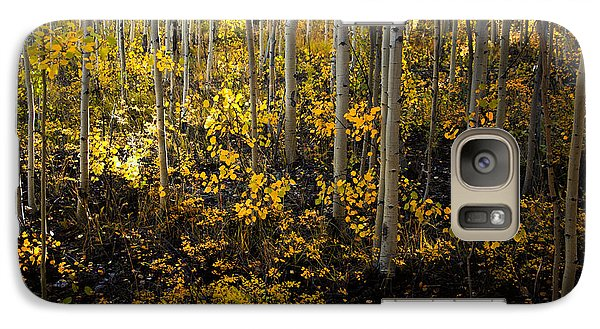 Galaxy Case featuring the photograph Young Forest by The Forests Edge Photography - Diane Sandoval