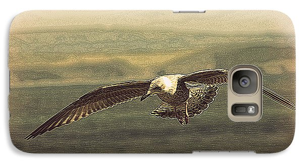 Galaxy Case featuring the photograph Young Gull by Linsey Williams