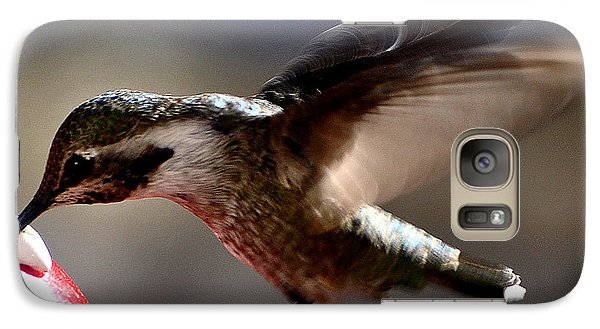 Galaxy Case featuring the photograph Young Hummingbird Male Anna by Jay Milo