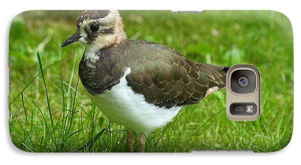Lapwing Galaxy S7 Case - Young Lapwing by Helmut Pieper