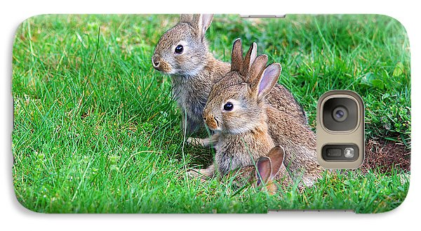 Galaxy Case featuring the photograph Young Rabbits by Nick  Biemans