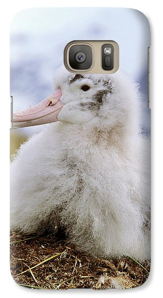 Young Wandering Albatross (diomendea Galaxy Case by Martin Zwick