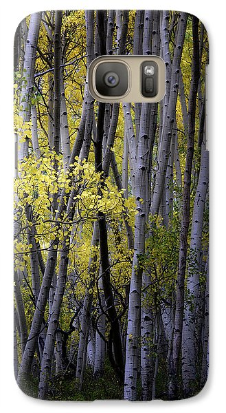 Galaxy Case featuring the photograph Young Aspens by The Forests Edge Photography - Diane Sandoval