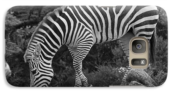 Galaxy Case featuring the photograph Zebra In Black And White by Kate Brown