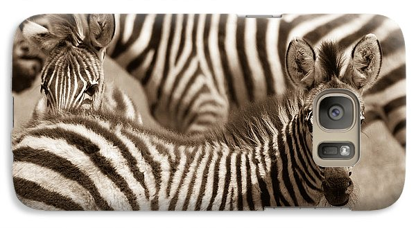Zebra Stripes Galore Galaxy S7 Case
