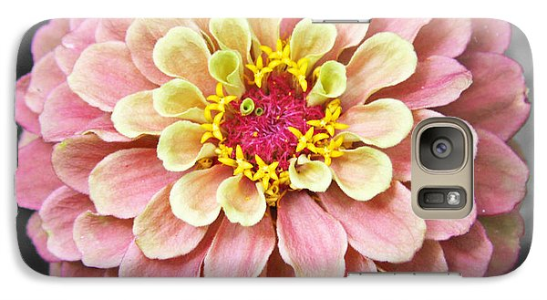 Galaxy Case featuring the photograph Zinnia In Pink And Yellow by Brooke T Ryan