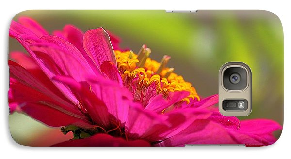 Galaxy Case featuring the photograph Zinnia Show by Erica Hanel