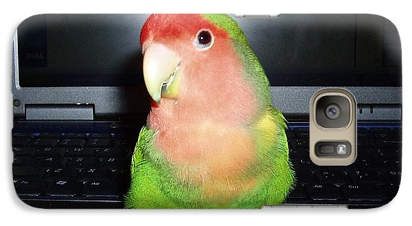 Galaxy Case featuring the photograph Zippy The Lovebird by Joan Reese