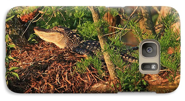 Galaxy Case featuring the photograph  Alligator On Nest by Luana K Perez