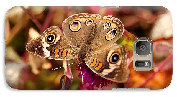 Galaxy Case featuring the photograph  Buckeye Butterfly  by Eva Kaufman