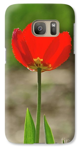 Galaxy Case featuring the photograph Beauty In Red by Dariusz Gudowicz