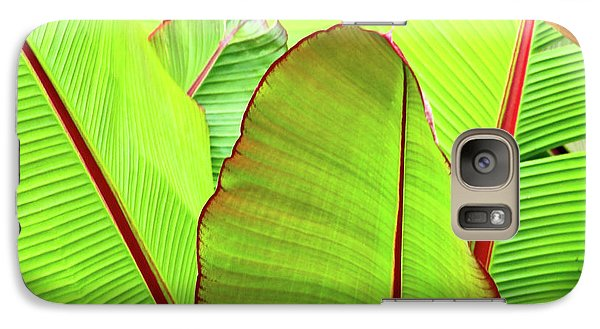 Galaxy Case featuring the photograph Bird Of Paradise by Ann Murphy