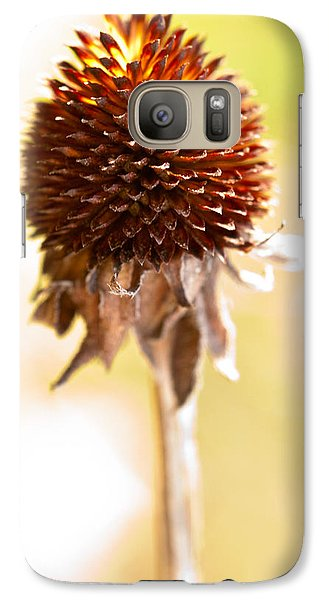 Black-eyed Susan After The Winter Galaxy S7 Case by  Onyonet  Photo Studios