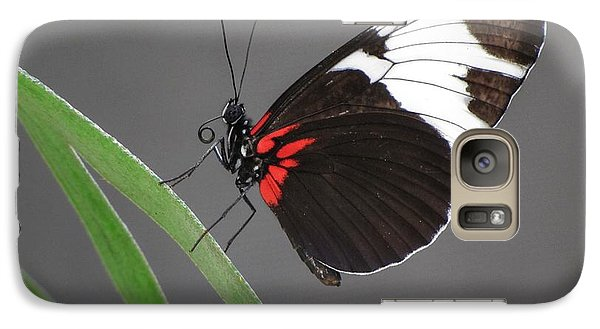 Galaxy Case featuring the photograph Butterfly  by Tam Ryan