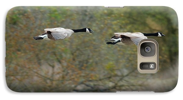 Galaxy Case featuring the photograph Canada Geese by Doug Herr