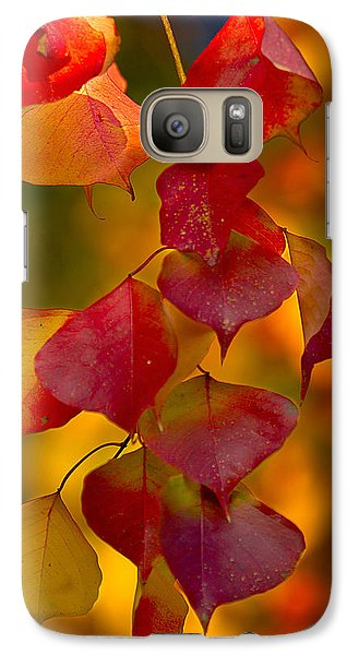 Galaxy Case featuring the photograph Fall Color 1 by Dan Wells