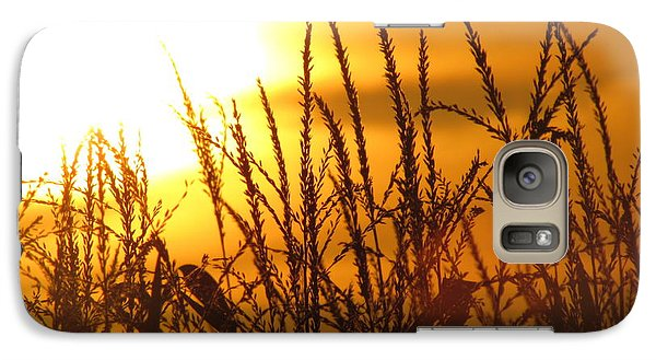 Galaxy Case featuring the photograph Farming Sunset by France Laliberte
